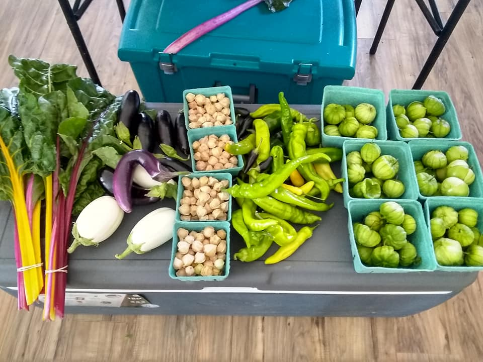 Vegetables from the Lazy Ox Farms garden